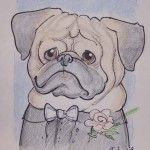 Caricature of Pug